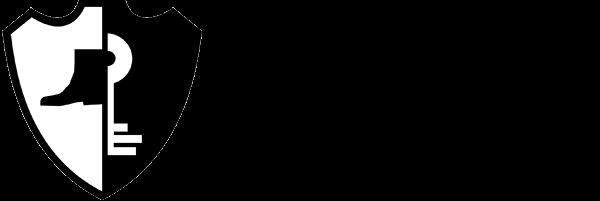 wdserwis logo